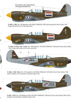 P-40N instruction